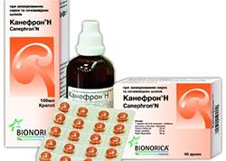 Растительные препараты при цистите Почки